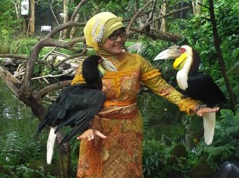 Balinese student holds a pair of Wreathed Hornbills