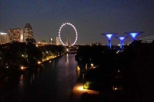 Singapore Flyer at night and Supertrees at right